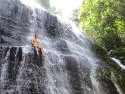 Beau sitting in a waterfall