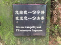 Correct chinese sign translation
