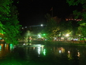 Famous fish pond at night