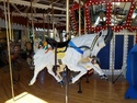 Great northern carousel mountain goat