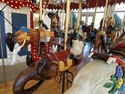 Great northern carousel otter