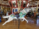 Great northern carousel wolf
