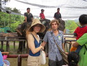 Junko and i with elephants