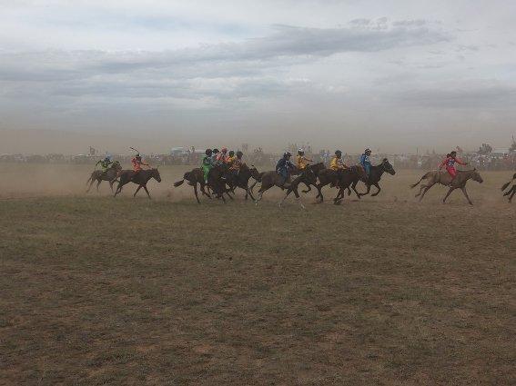 Naadam horse race
