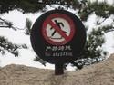 No striding