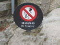 No tossing