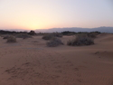 Sunset over the desert by samar
