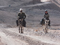 Tajik herders