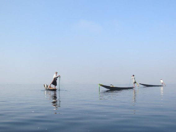 Three Inle fisherman rowing with their legs